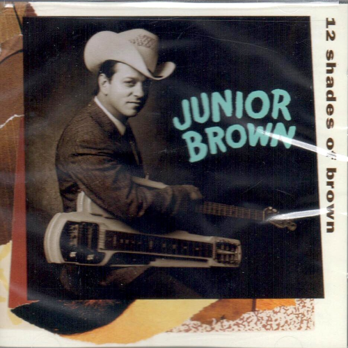 BROWN, JUNIOR - 12 Shades Of Brown