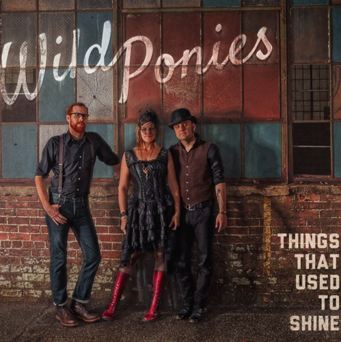 WILD PONIES - Things That Used To Shine